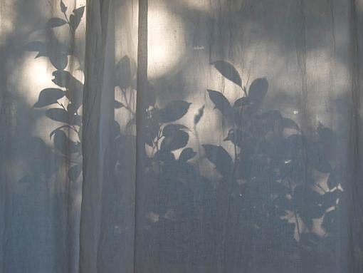 """December Project """"Playing with Shadows""""-curtainshadows.jpg"""