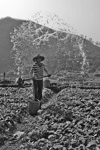 January 2012 Project - B&W Photography-ladywater.jpg
