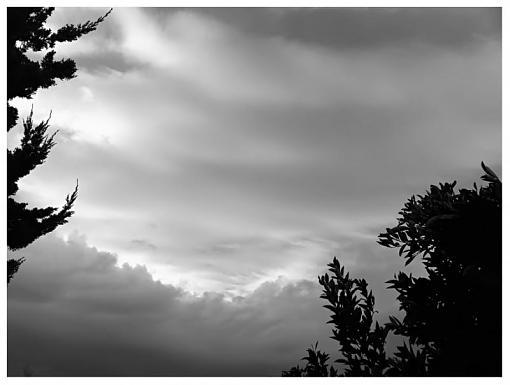 January 2012 Project - B&W Photography-dramatic-softnesssc.jpg