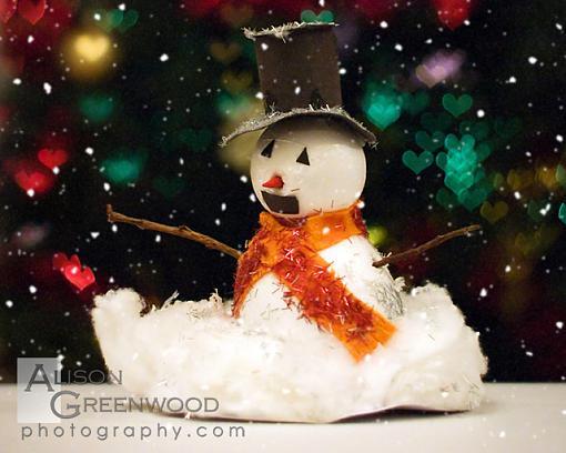 December Project: Festive Lights-img_0568_i_love_snow_by_alison_greenwood.jpg