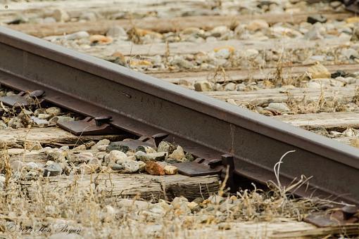 March project: Tracks-20140319-rail-denton-7249.jpg