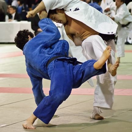Name:  Judo Dance.jpg Views: 112 Size:  43.0 KB