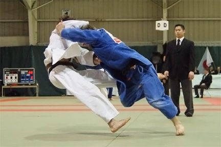 Name:  Judo Push.jpg Views: 103 Size:  28.4 KB