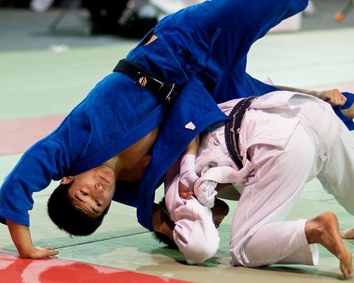 A couple of Judo shots-judo-1-tumbling.jpg
