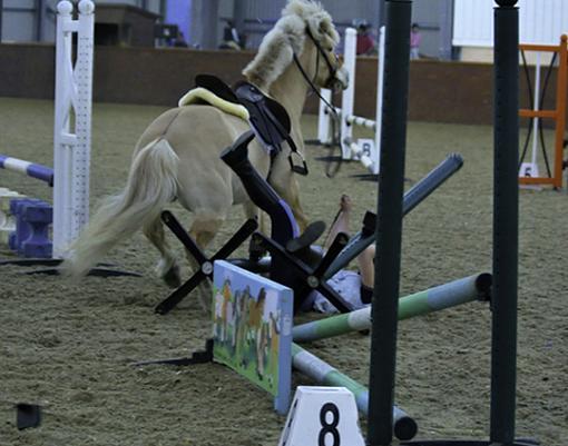 horse wrecks-crash4.jpg
