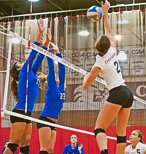 College volleyball: Chico State bested by tough opponent-7rb_9194_2.jpg