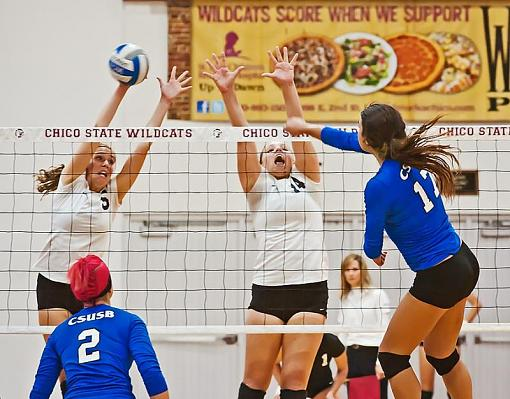 College volleyball: Chico State bested by tough opponent-7rb_9031_2.jpg