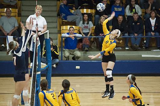 Volleyball Tournament Action-dsc_5796-2-1000.jpg