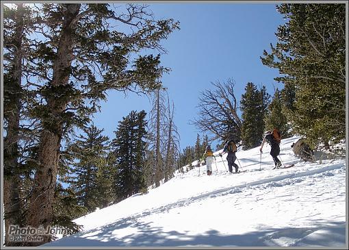 Days Fork Ski Tour-p3100066_1000.jpg