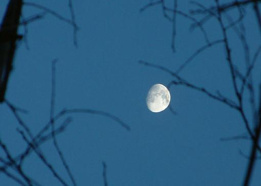 Speed here is the next frame.-moon-2.jpg