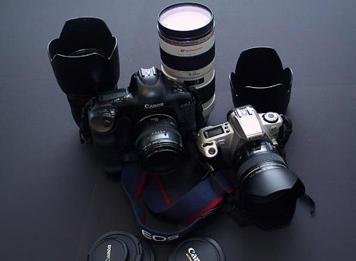 Camera Family Portrait-missing-children.jpg