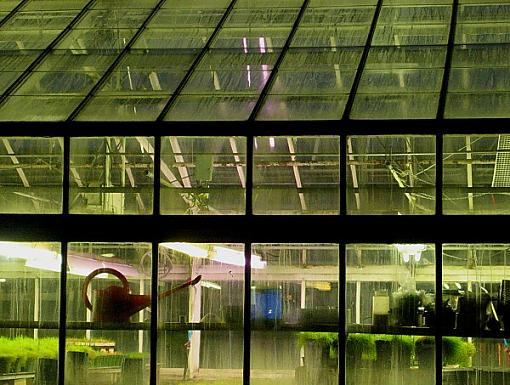 Photographyreview: The People-greenhouse1.jpg