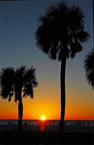No words: The Golden Hour-clearwater.jpg