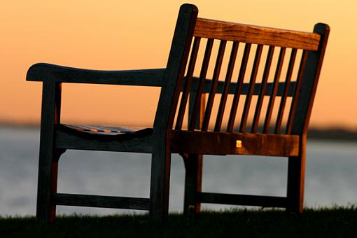 No words: The Golden Hour-bench-int.jpg