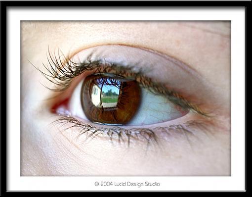 Through the eyes of a child...-amanda-eye.jpg