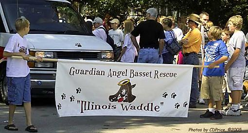 The Basset Waddle I-gabr1.jpg