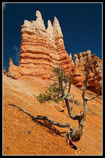 Your Best Photos from 2005-img_5110_bryce.jpg