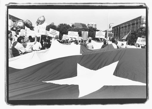 Proposition 2-karls-flag_resize.jpg