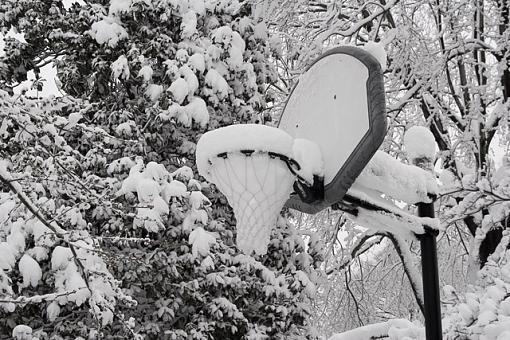 Winter storm shots-hoop.jpg