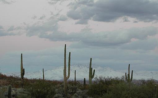 It snowed in Phoenix too!-supers2.jpg