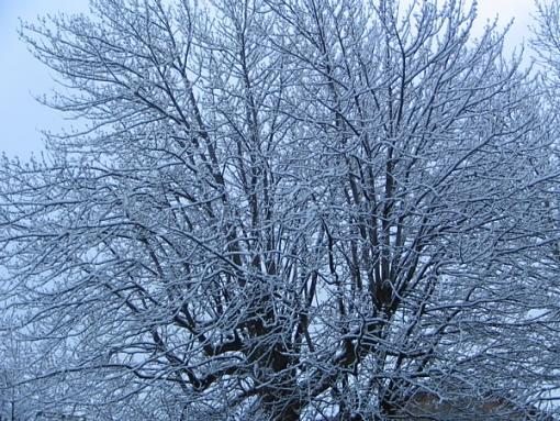 Isn't Spring Nice...-snow-3.jpg
