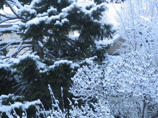 Isn't Spring Nice...-snow-4.jpg