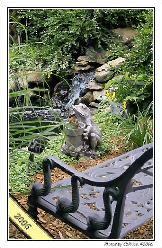 . . . How does your Garden Grow? - Water Feature-lngs06-223.jpg