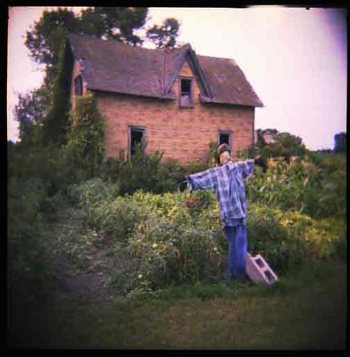 New Holga user-scarecrow.jpg