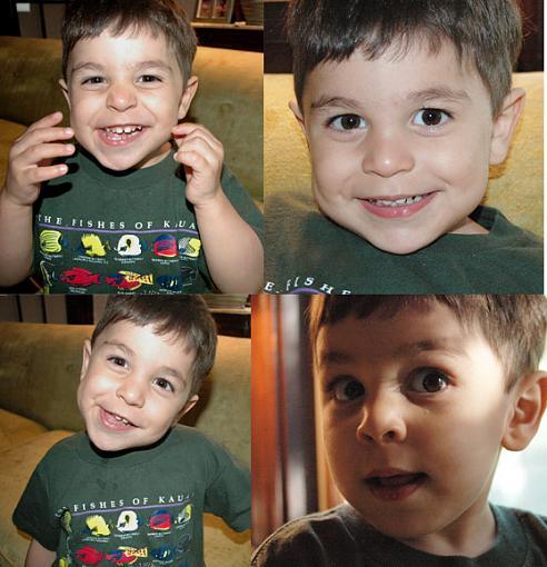 PENNY---here's the boy-caleb.jpg