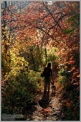 Fall Color-_mg_2885-edit.jpg