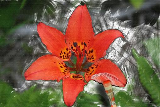 The photoshopped thread!-flower-painting.jpg