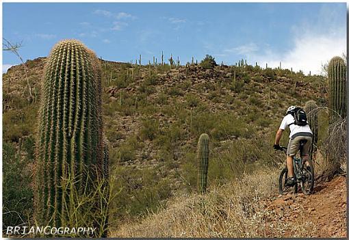 Black Canyon Trail.  AZ-bct_03.jpg