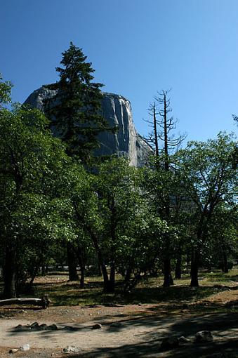 Official Yosemite Gathering Photos-0071.jpg