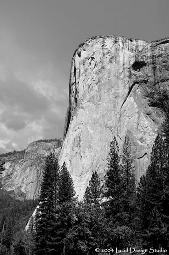 Official Yosemite Gathering Photos-el_capitan_bw.jpg