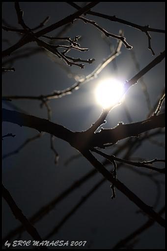 Short Notice Project: Moonlight-img_8988_crop_640.jpg