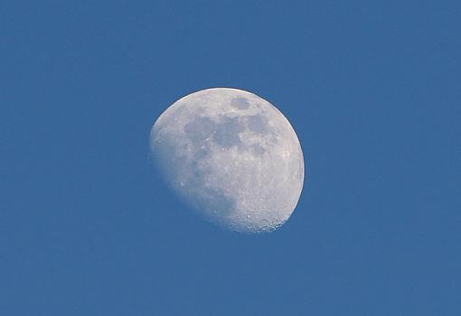 Short Notice Project: Moonlight-img_2845_1.jpg