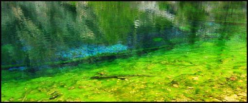 Natural neon impressionism sort of...-algae-rippless.jpg