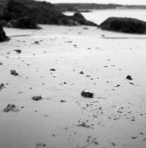 Playing with a new toy at the beach...-10232007-3.jpg