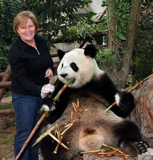 Big Trouble in Big China-panda03.jpg