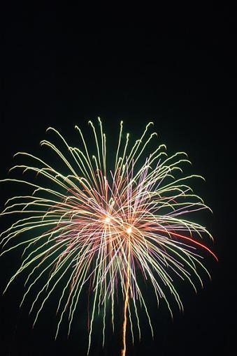 More Fireworks (no tripod)-fireworks_3sm.jpg