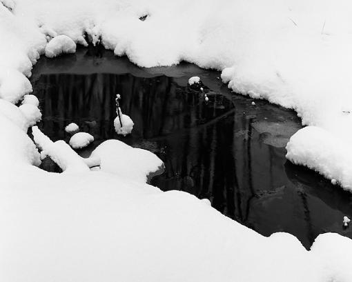 Walking in a Winter wonderland :)-12032007-8.jpg