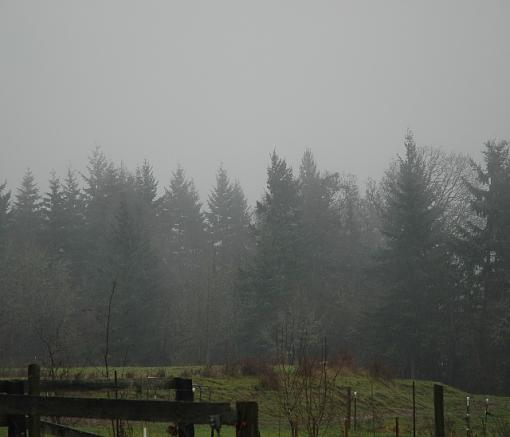 Just another rainy day-dsc_3501c.jpg