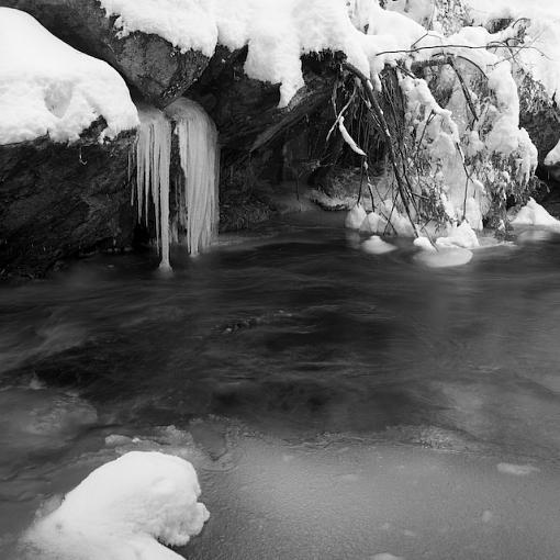 Took A Day Off For Winter Goodness-01042008-3.jpg