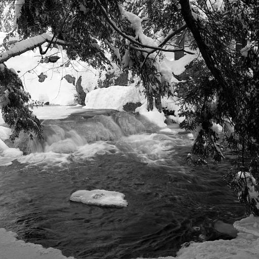 Took A Day Off For Winter Goodness-01042008-12.jpg