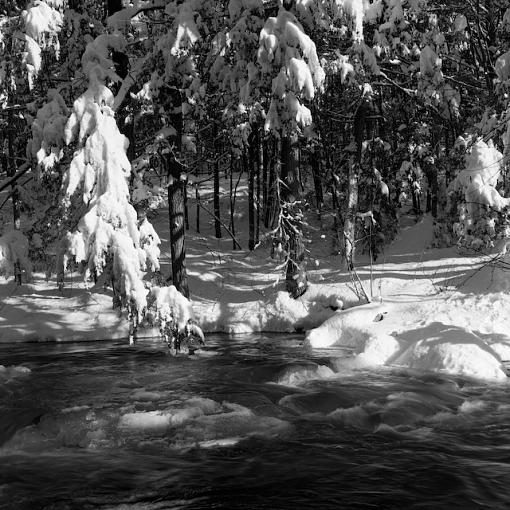 Took A Day Off For Winter Goodness-01042008-13.jpg