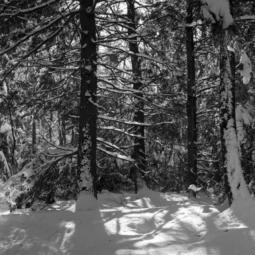 Took A Day Off For Winter Goodness-01042008-17-2.jpg