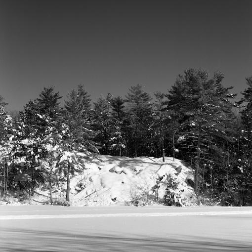 Took A Day Off For Winter Goodness-01042008-23.jpg