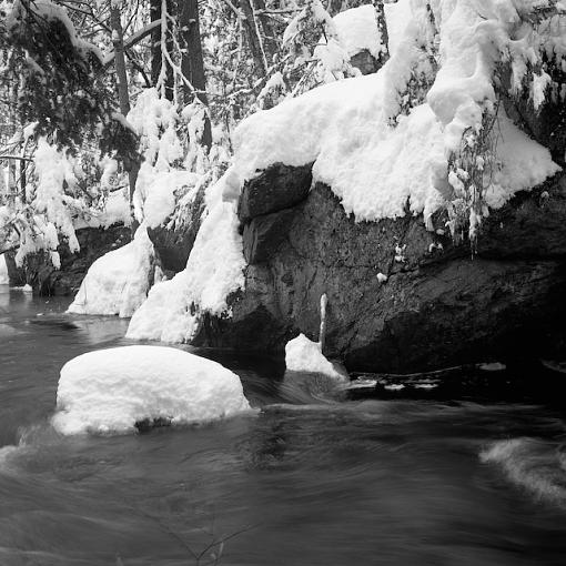 Took A Day Off For Winter Goodness-01042008-29.jpg