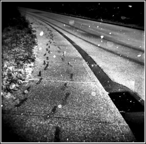a couple holga shots.-white-path-copy.jpg