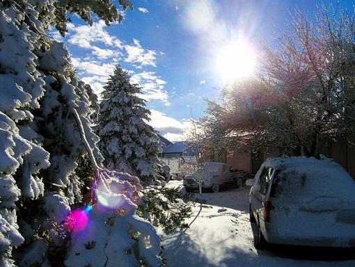 W/NW - Winterscapes-mcarterwinterlow.jpg